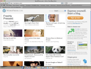 Can you see my blog on the WordPress home page?